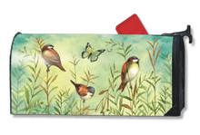 Sanctuary Sparrows MailWrap
