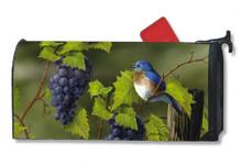 Vineyard Bluebird MailWrap