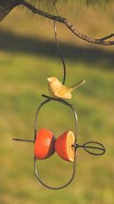 Fruit Spear / Ceramic Bird