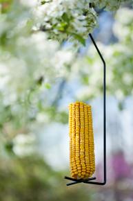 Corn Cob Seed Cylinder Feeder Black