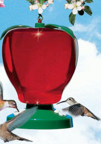 Apple Hummingbird Feeder 48 oz