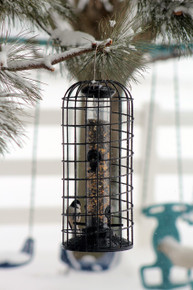 Seed Feeder with Squirrel Blocking Cage