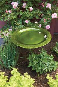 Ivy Green Birdbath