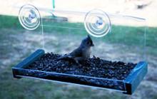 Window Greenhouse Feeder