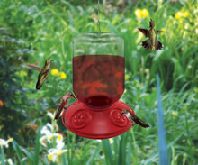 Dr. JB complete Switchable 48 oz Feeder with Red Flowers (Bulk)
