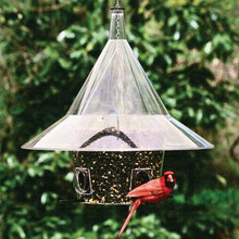 Mandarin Feeder (New Arch Ports)