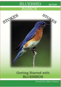 Stokes Bluebird DVD Video