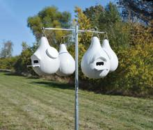 Songbird Essential Starter Gourd Pole