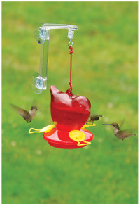 Window Red Bird Hummingbird Feeder