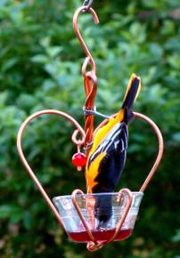 Love Birds Jelly Feeder