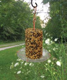 Seed Cylinder Tray Feeder
