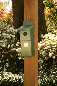 Nesting Box-Hunter Green
