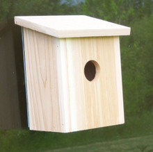 Nest View Bird House