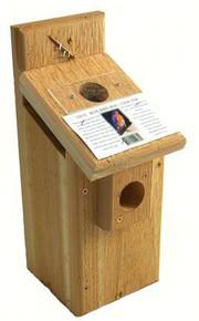 Western Bluebird Box Viewing Top