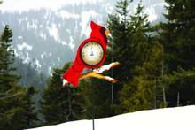 Cardinal Thermometer