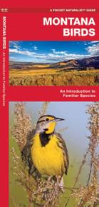 Montana Birds