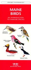 Maine Birds