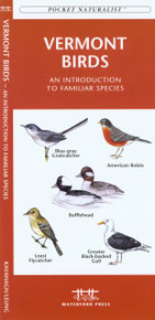 Vermont Birds