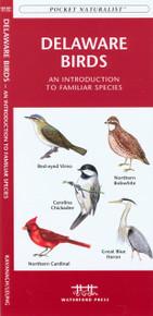Delaware Birds
