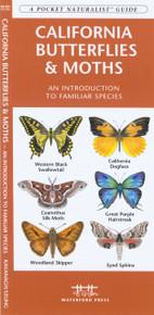 California Butterflies and Moths