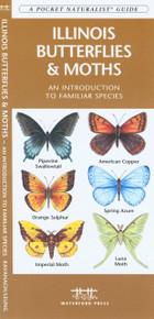 Illinois Butterflies and Moths