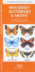 New Jersey Butterflies and Moths