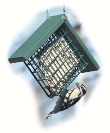 Going Green Suet Cage