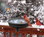 Heated bird bath with 3 mounting options: deck mount, clamp mount and ground