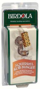 Squirrel Bungee