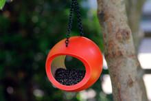 Mango Fly Feeder Orange