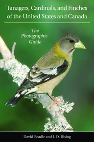 Tanagers, Cardinals, and Finch