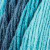Red Heart Blue-Tiful Super Saver Ombre Yarn (4 - Medium)