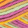 Red Heart Popsicle Brights Scrubby Smoothie Yarn (4 - Medium)