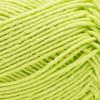 Patons Lime Punch Hempster Yarn (3 - Light)