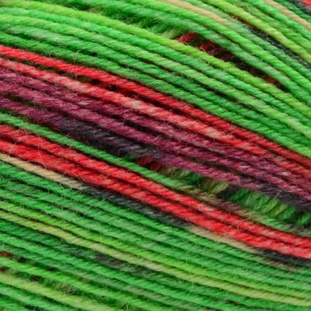 Opal Vegi - The Vegetable Rainforest 14 Yarn (1 - Super Fine)