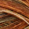 Opal Georg - The Grillmaster Rainforest 14 Yarn (1 - Super Fine)