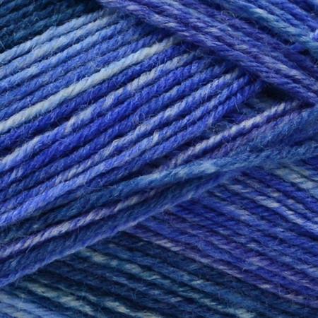 Opal Simon - The Bluebird Rainforest 14 Yarn (1 - Super Fine)