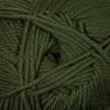 Cascade Chive 220 Superwash Merino Wool Yarn (4 - Medium)