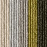 Caron Olive Oil X Pantone Yarn (5 - Bulky)