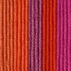 Caron Spicy Blooms X Pantone Yarn (5 - Bulky)