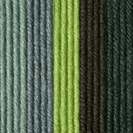 Caron Summer Forest X Pantone Yarn (5 - Bulky)