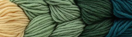 Caron Terrarium Green X Pantone Yarn (5 - Bulky)