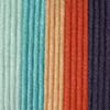 Caron Blushing Coral X Pantone Yarn (5 - Bulky)