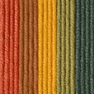 Caron Sunset Streak X Pantone Yarn (5 - Bulky)