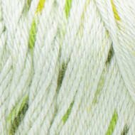 Caron Chlorophyll Simply Soft Speckle Yarn (4 - Medium)