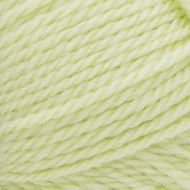 Patons Soft Sprout Classic Wool Worsted Yarn (4 - Medium)
