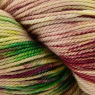 Sweet Georgia Yarn Rainbow Sprinkles Tough Love Sock Yarn (1 - Super Fine)
