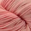 Sweet Georgia Yarn Apricot Tough Love Sock Yarn (1 - Super Fine)