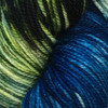 Sugar Bush September Bay of Fundy Festivity Yarn (3 - Light)