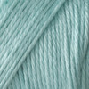 Caron Robins Egg Simply Soft Yarn (4 - Medium), Free Shipping at Yarn Canada